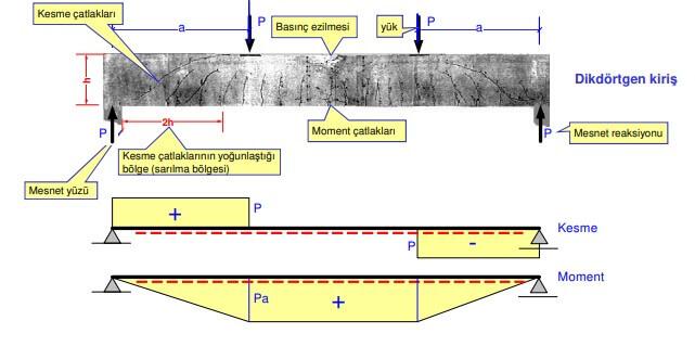 kesme kuvveti grafiği